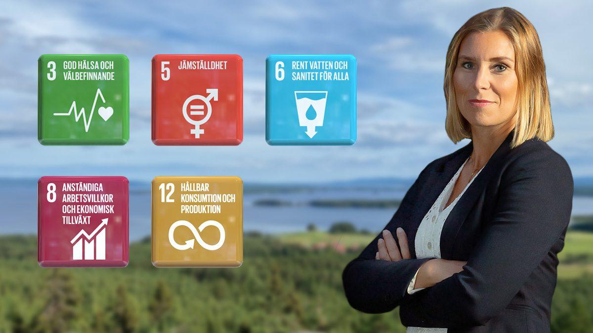 Ylvali, VD, MYoroface AB och de globala miljömålen